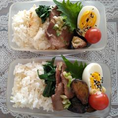 料理/弁当記録/お弁当 お弁当記録🍱 ・ねぎ塩牛タン ・ゆで卵 …