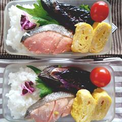 シャケ弁/おうちごはん/料理/お弁当箱/弁当記録/お弁当 お弁当記録。 焼き鮭は昨日の残り。 ナス…