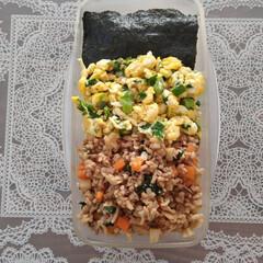 お弁当記録/料理/お弁当/弁当/暮らし 今日のお弁当記録 ・野菜たっぷりそぼろ丼…