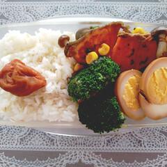 料理/弁当記録/お弁当 本日のお弁当記録 ・焼き野菜 ・焼き鮭 …
