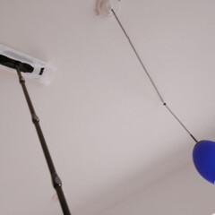 クイックルワイパー フロア用掃除道具 ブラックカラー 本体+2種類シートセット | クイックル(フロアワイパー)を使ったクチコミ「天井そうじしたら驚いた😳 ってことを書い…」