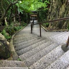 天狗さん/パワースポット/お参り/信心/勝守り 滋賀県八日市にある太郎坊宮の階段です 下…