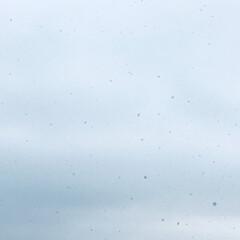 正月飾り/吹雪/雪/冬/大掃除/風景 朝起きたら雪が舞ってました❄️☃️ 昨日…