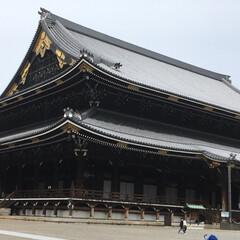鯖寿司/いづう/京都/母/父 そうだ京都に行こう!と旦那さんが昨日言う…