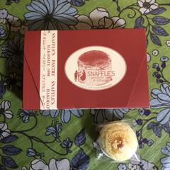 函館/スィーツ/チーズケーキ 我が家の定番函館スナッフルスのチーズケー…