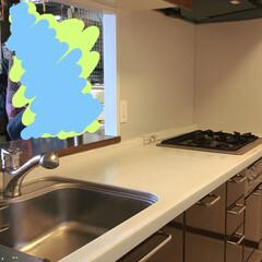 大理石/キッチン/リフォーム 今日からキッチンのリフォームが始まります…