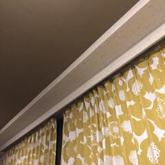 リビング/サンゲツ/壁紙/カーテン 壁と天井です 天井はよく日本間の砂壁風の…