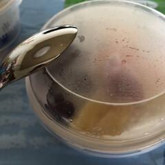 好物/九州/かき氷/しろくま しろくまです 練乳たっぷりのシャリシャリ…