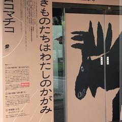 展覧会/絵本作家 ミロコマチコ展に行って来ました 全然知ら…(1枚目)