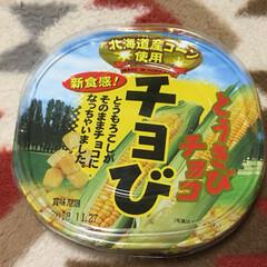 お菓子?/コーン🌽/チョコレート 函館で買ったお菓子🌽 コーン一粒づつにホ…