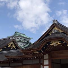 名古屋城/再建/金鯱/お城 本当に久々に名古屋へ用事があり来ました …(2枚目)