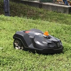 ロボット/草刈り/おでかけ/風景/掃除 草刈りロボット🤖 サービスエリアで働いて…