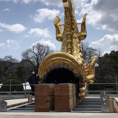 名古屋城/再建/金鯱/お城 本当に久々に名古屋へ用事があり来ました …(3枚目)