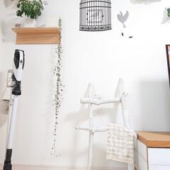 流木/リミアな暮らし/100均/DIY 流木ラダーをテレビボード横に置き、少しデ…