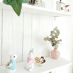 ナチュキチ雑貨/ハンドメイド/DIY/雑貨だいすき 手作りシェルフに、ナチュキチのウサギの置…