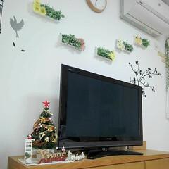 スリコ/クリスマスツリー/100均/ダイソー/セリア/DIY/... カウンター上にツリーを置いてましたが娘に…(1枚目)