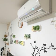 エアコン掃除/DIY/100均 今日は涼しかったので、エアコンの掃除をし…(1枚目)