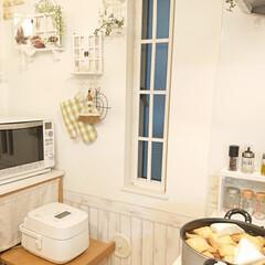 夕飯/おでん/DIY 昨日の夜はおでんを作りました。 娘が『夏…
