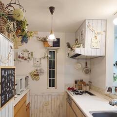 キッチン/TAKARASTANDARD/DIY 我が家のキッチンはTakara stan…