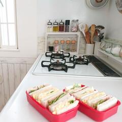 サンドイッチ弁当/娘の手料理/おうちごはん/暮らし/DIY/100均 小6娘ちゃんが、お昼に始めてサンドイッチ…