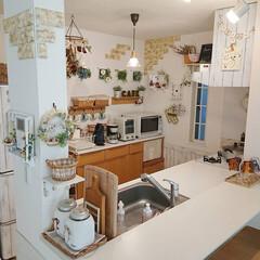 キッチン/Takara standard/DIY/ハンドメイド/ニトリ 今日の我が家のキッチン🎶朝からおでん作っ…
