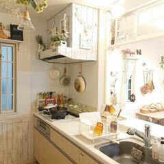 Takara standard/キッチン/DIY/雑貨 今日は4ヶ月ぶりに美容室に行くので、朝か…