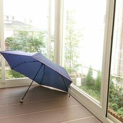 お庭/折りたたみ傘/サンルーム 昨日雨が降り、折り畳みの傘を使いました。…
