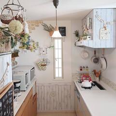 TAKARASTANDARD/キッチン/DIY/おうち自慢/お家自慢 私の理想のキッチンにはまだもう少し何かし…