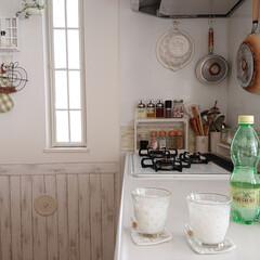 カルピス カルピス ギフトセット/CN20P(ギフトセット)を使ったクチコミ「夏はカルピス~💕 私は炭酸水入れて飲むの…」