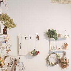 観葉植物 フェイクグリーン ボタンリーフバイン〔×12本入り〕アレンジメント/インテリア(人工観葉、フェイクグリーン)を使ったクチコミ「アナベルドライを棚に飾ってみました♪ 新…」(1枚目)