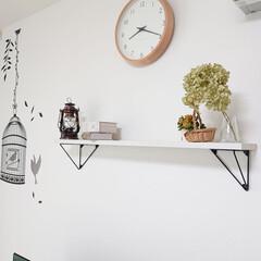 アウトドアランタン キャプテンスタッグ アンティーク暖色LEDランタン 120×220mm ブロンズ | CAPTAIN STAG(LEDランタン)を使ったクチコミ「リビングの棚のディスプレイは、お庭に咲い…」