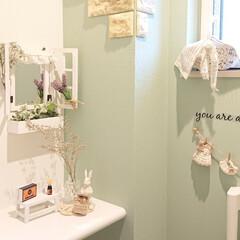 編み物大好き/トイレ/ナチュラルキッチン/Vita/雑貨だいすき トイレの棚の上にはナチュラルキッチンで買…