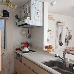TAKARASTANDARD/DIY/キッチン/100均 昨日の14時頃のキッチンです♪ 冬の我が…