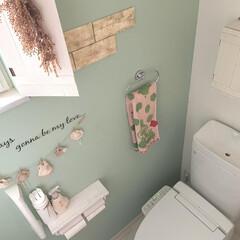 トイレ/リミとも部/インテリア/ライフスタイル/暮らしを楽しむ/おうち時間/... トイレのインテリアはナチュラルで可愛くし…(1枚目)