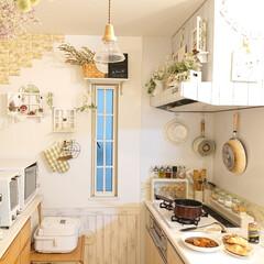 トースター オーブントースター おしゃれ 2枚 縦型 オリジナルレシピ付 コンパクト キッチン家電 プレゼント ラドンナ Toffy トフィ―オーブントースター | Toffy(トースター)を使ったクチコミ「小6娘ちゃんが、ビーフシチューを作ってく…」