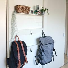 ガストンルーガ/リュック/ディアウォール/DIY 大学1年息子君の部屋に作ったカバン掛け。…