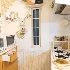 トースター オーブントースター おしゃれ 2枚 縦型 オリジナルレシピ付 コンパクト キッチン家電 プレゼント ラドンナ Toffy トフィ―オーブントースター | Toffy(トースター)を使ったクチコミ「今日の夕飯は、焼きそばとコールスローです…」