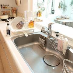 シンク/食器用洗剤/キュキュット キュキュットの白いボトルが可愛いと思い買…