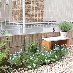 アジサイ/芝桜/ラベンダー/ガーデニング/お庭/暮らし/... 廃材で作ったミニベンチをお庭に置いてみま…
