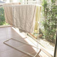 ニトリのタオル/タオルかけ/ニトリ 今日も気持ちいい秋晴れ~♪ 洗濯沢山しま…