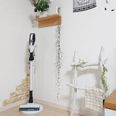 山善/掃除機収納/DIY/ニトリ/流木ラダーDIY 我が家は掃除機を出して置いてます。 気に…