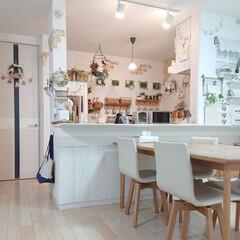 キッチン/冬/ハンドメイド/DIY/セリア 我が家の冬のキッチンは、ちょっと暗い為電…