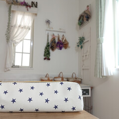 可愛い/ダイソー/筆箱/雑貨/DIY/100均/... こちらの筆箱は、ダイソーの物です。 小6…