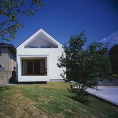 家型/シンボルツリー/塗り壁/漆喰/無垢 ライアントのご実家の敷地横での計画です。…