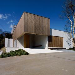 中庭のある家/杉板/左官/シンプルモダン/和モダン/空間/... 杉板と左官仕上げのシンプルでモダンであり…