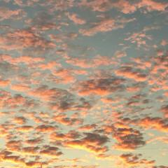夕焼/空 綺麗に染まった夕暮雲☁️