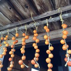 のどかな風景/秋/干し柿/田舎 柿だよー^_^