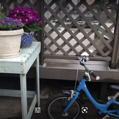 台風/庭/ベンチ/テーブル/DIY/ペンキ 台風で壊れた塀を、  テーブルとベンチに…