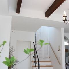 ホワイトインテリア/ドウダンツツジ/リビング階段 リビング階段