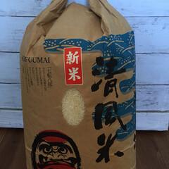 早く食べたい❗️/新米 昨日、弟夫婦から新米が届いた❗️ 稲刈り…